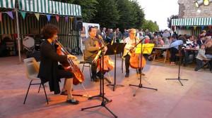 les violoncelles